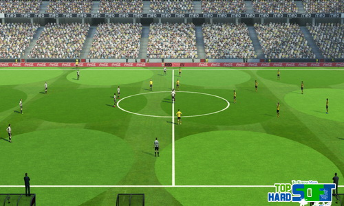 PES 2013 Full HD Turfs Pack by TopHardSoft