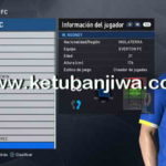 PES 2017 Transfer Update 10.07.2017 For PES Professionals 3.1