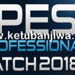 PES 2018 PES Professionals Patch v2 AIO Single Link