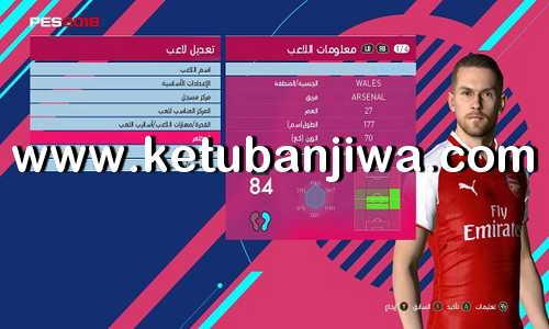 PES 2017 PES Professionals Patch v4.2 Option File Update 11 April 2018 by Hatem Fathy Ketuban Jiwa