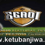 PES 2018 Natural Pitch + Turf + 3D Grass Like PES 2019