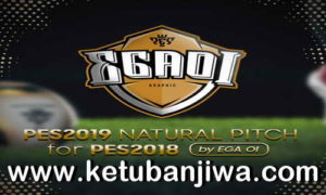 PES 2018 Natural Pitch + Turf + 3D Grass Like PES 2019 by EgaOi Ketuban Jiwa