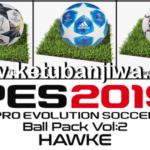 PES 2019 Ballpack Vol. 2 by Hawke