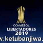PES 2019 PS4 CONMEBOL Copa Libertadores Option File