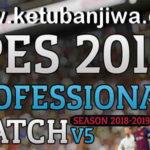 PES 2017 Professionals Patch v5 AIO Season 2019
