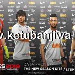 PES 2019 DLC 5.01 Fix For CPY Version
