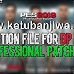 PES 2019 Professionals Patch v2 Option File DLC 5.0