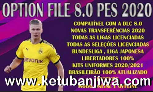 eFootball PES 2020 Falcon12 Option File Compatible DLC 8.00 For PC Ketuban Jiwa