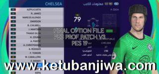 PES 2019 Final Option File 30/10/2020 For Professionals Patch v3